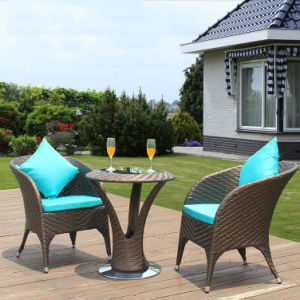 Outdoor PE Rattan / Wicker Square Coffee Shop Tables and Chairs (Z309) pictures & photos