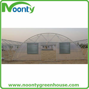 Arch Type PC Sheet Tunnel Greenhouse for Vegetables Growing