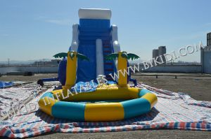 2015 Hot Sale Palm Tree Big Inflatable Slides, Inflatable Water Slides with Pool pictures & photos