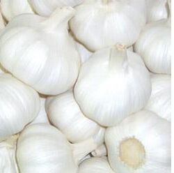 Fresh Pure Garlic Export pictures & photos