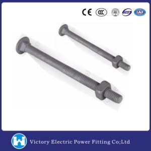 Round Head Carriage Bolt for Pole Line Hot DIP Galvanized pictures & photos