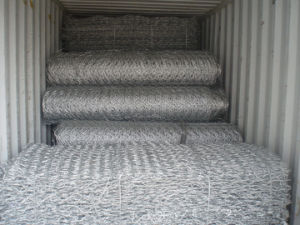 Gabion Cage (SGS CERTIFIED FACTORY) pictures & photos