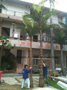Good Quality Outdoor Wholesale Artificial Palm Tree for Garden Decoration pictures & photos