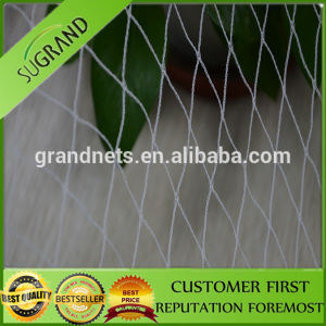 HDPE Anti Bird Netting Made in China From Direct Factory pictures & photos