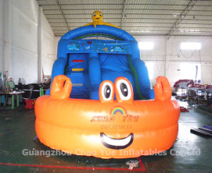 Amazing Commercial Grade Amusement Park Water Slides for Adults and Kids pictures & photos