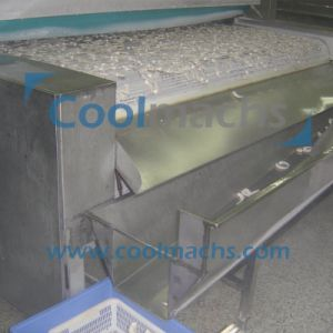 IQF Air Blast Tunnel Quick Freezer/Tunnel IQF Machine pictures & photos