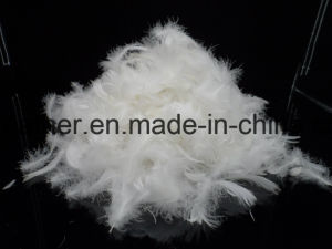 Washed White Duck Feather (2-4cm 4-6cm) GB/T17685-2016 pictures & photos