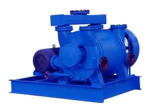 2BE1353 Water Ring Vacuum Pump