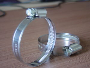 Carton Steel Germany Type Hose Clamp pictures & photos