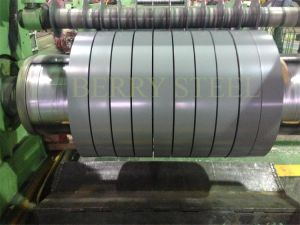 High Quality PPGI Steel in Coil