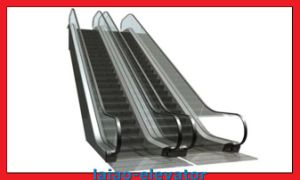 Escalator with Stainless Steel Steps pictures & photos