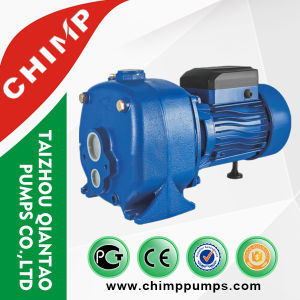 Double Ejector Self-Priming Centrifugal Pumps for Deep Wells pictures & photos