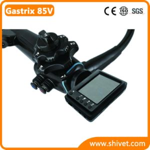 Portable Veterinary Gastroscope System (Gastrix 85V) pictures & photos