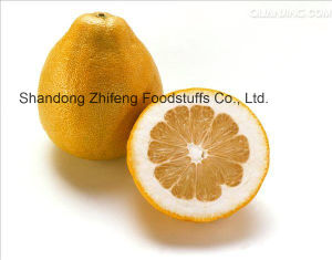 Chinese Fresh Pomelo with Good Quality pictures & photos
