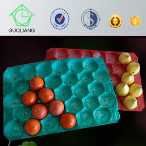 Free Samples Food Industry Packaging Customizable Plastic PP Tray pictures & photos