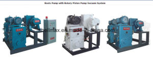Roots Pump with Air Ejector Water Ring Pump Vacuum System pictures & photos