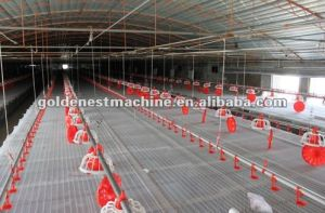 Automatic Poultry Equipment/Chicken House Equipment/ Poultry House Complete Farming System