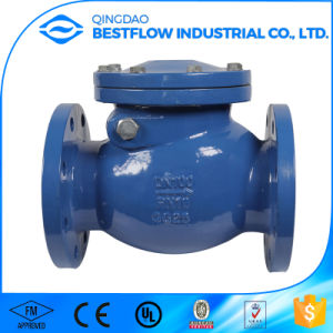 Cast Iron Silence Check Valve pictures & photos