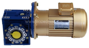 1/2HP 300rpm AC Gear Motor with Worm Gear Nmrv Gearbox