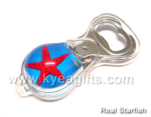 Crystal Magnet Bottle Opener With Real Fishstar