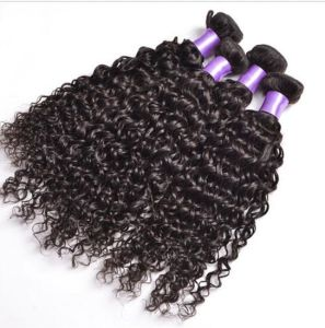 Deep Curly Virgin Human Hair Unprocessed Brazilian Hair pictures & photos