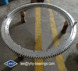 out-Geared Slewing Bearing with Flange (RKS. 210841) pictures & photos
