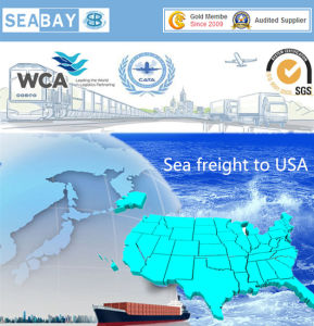 Cheapest Container Shipping From China to USA pictures & photos