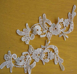 Beaded Embroidery Bridal Cotton Lace Stocks pictures & photos