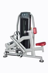 Commercial Fitness Lower Back/Gym for SGS and Ce, Fitness Equipment, Fitness, Gym (UM312) pictures & photos
