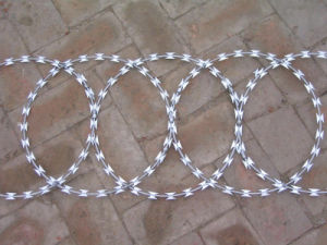 Hot-DIP Galvanized Razor Wire Fencing/Razor Barbed Wire pictures & photos