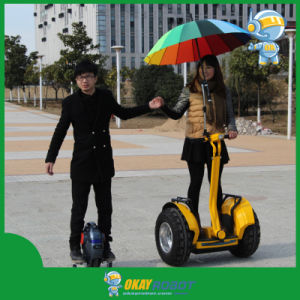 Electric Self Balancing Chariot Personal Transporter with CE Approved