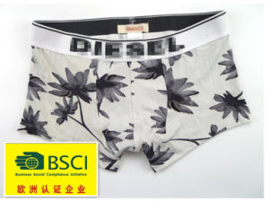 2015 Hot Product Underwear for Men Boxers 421 pictures & photos