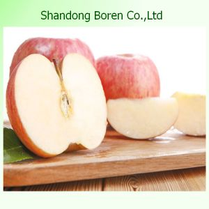 Wholesale Apple in China with High Quality
