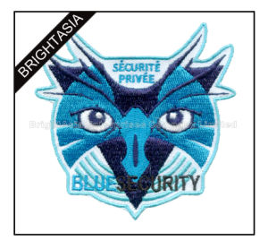 Wholesale Promotion Embroidery Patch for Clothing for Children (BYH-1008) pictures & photos