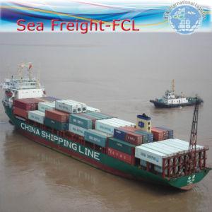 Wholesale Exhibition Shipment