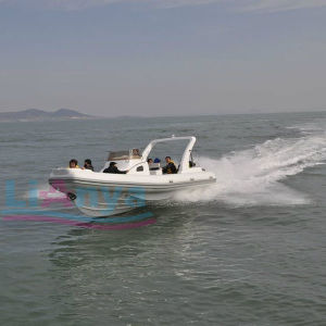 Liya 14-27ft Luxury Hypalon Yacht Rigid Hull Inflatable Boat with Twin Engines pictures & photos
