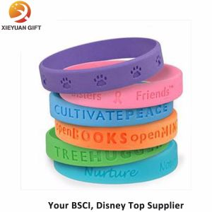 Rainbow Color Silicon Wristband with Debossed Written Logo pictures & photos