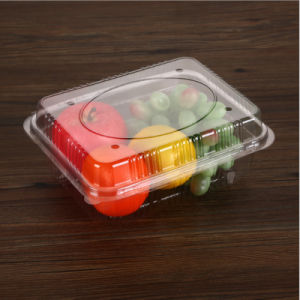 Plastic Pet Food Container Fruit Packaging Tray