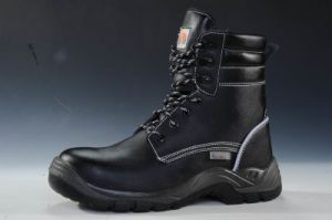 CE Certified Style, Safety Shoes, BSCI Approval, Winter Boot, Reach Tested
