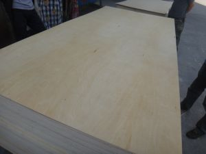 Birch Face Combi Core Plywood pictures & photos