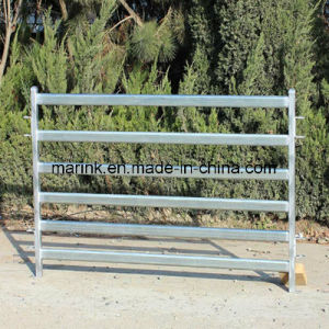 Best Sale in Australia 1.8X2.1m Cattle Panel pictures & photos