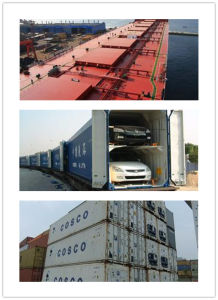 Reliable Consolidate Shipping Service From China to Cuba for Special Container