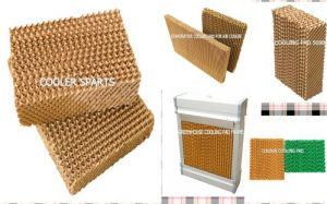 7090/6090/5090 Evaporative Cooling Pad pictures & photos