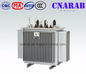 11kv Oil Immersed Distribution Transformer pictures & photos