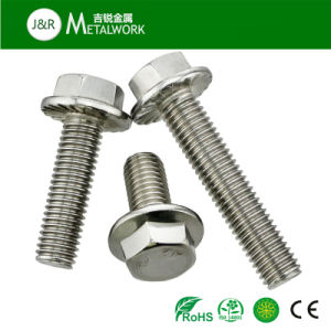 Stainless Steel DIN6921 Hex Head Flnage Bolt (SS304 SS316 316L) pictures & photos
