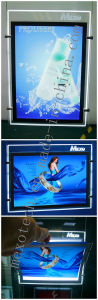 LED Multi Pocket Light Displays pictures & photos