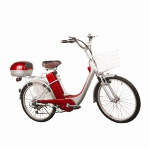 SGS Approved Electric Bicycle Manufacturer