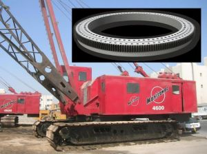 Slewing Rings with 1-Year-Warranty Used for Crawler Crane (QW1120.32) pictures & photos