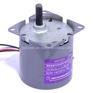 AC Geared Motor with Highest Ratio (TYZ) pictures & photos