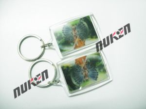 2015 Mini 3D Plastic Key Chain